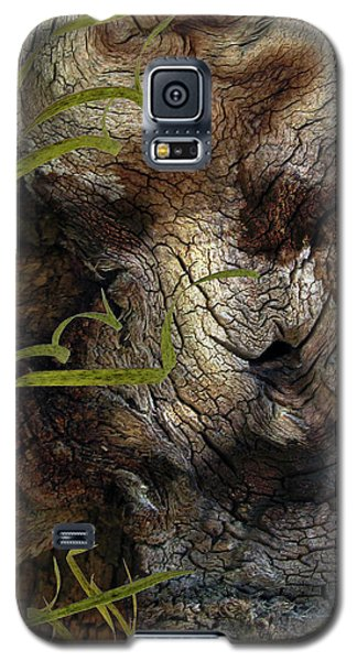 Galaxy S5 Case featuring the photograph Tree Memories # 37 by Ed Hall
