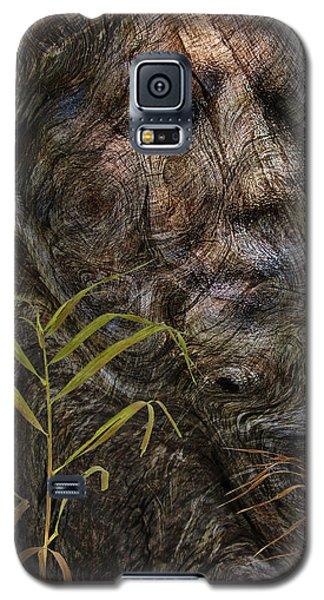Galaxy S5 Case featuring the photograph Tree Memories # 39 by Ed Hall