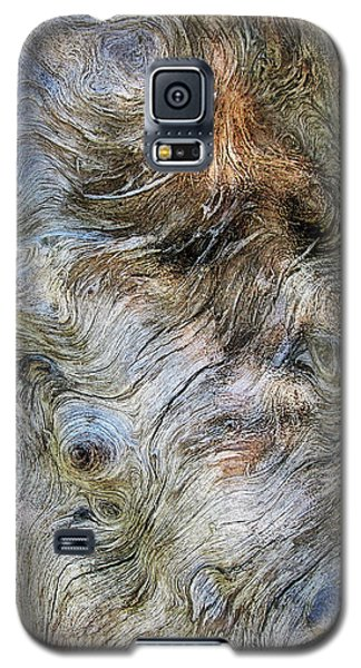 Galaxy S5 Case featuring the photograph Tree Memories # 40 by Ed Hall