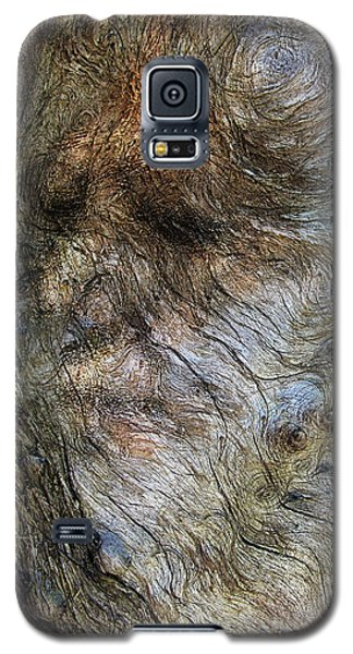 Galaxy S5 Case featuring the photograph Tree Memories # 41 by Ed Hall