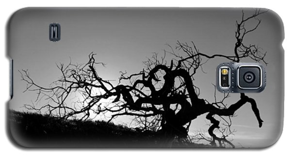 Tree Of Light Silhouette Hillside - Black And White  Galaxy S5 Case