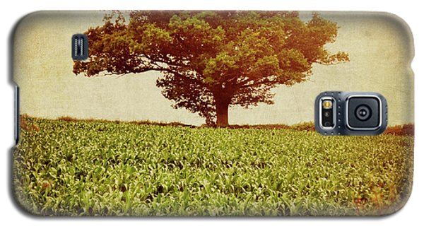 Galaxy S5 Case featuring the photograph Tree On Edge Of Field by Lyn Randle