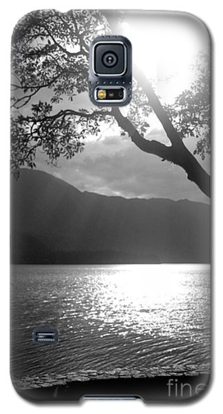Tree On Lake Galaxy S5 Case