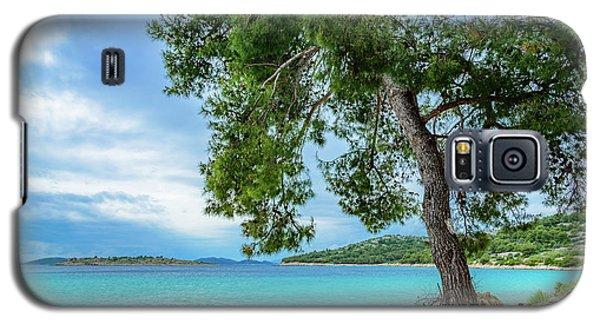 Tree On Northern Dalmatian Coast Beach, Croatia Galaxy S5 Case