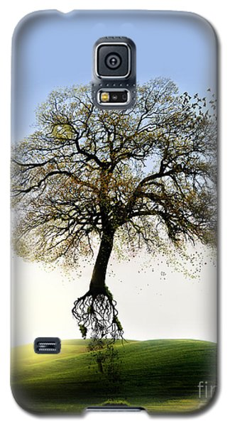 Tree On The Move Galaxy S5 Case
