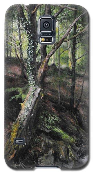 Tree River Wood Galaxy S5 Case