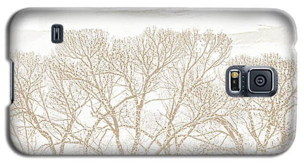 Galaxy S5 Case featuring the photograph Trees Silhouette Brown by Jennie Marie Schell