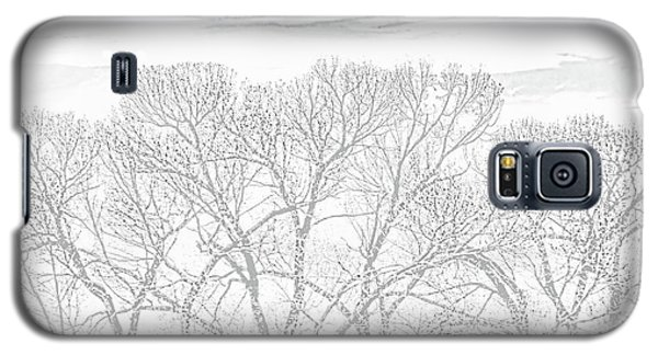 Galaxy S5 Case featuring the photograph Tree Silhouette Gray by Jennie Marie Schell