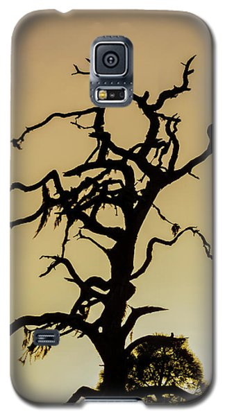 Tree Silhouette Galaxy S5 Case