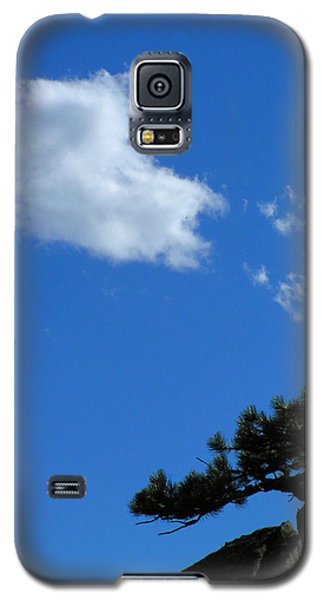 Tree Sky Cloud Galaxy S5 Case