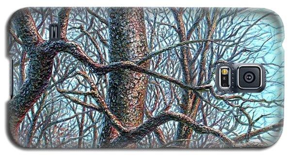 Tree Study Galaxy S5 Case
