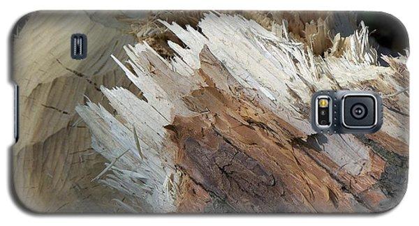Tree Stump Galaxy S5 Case