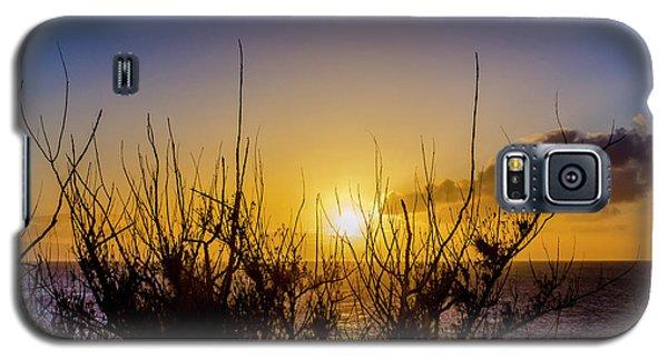Tree Sunset Galaxy S5 Case