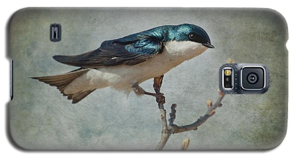 Tree Swallow Galaxy S5 Case