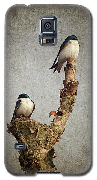 Tree Swallows Galaxy S5 Case