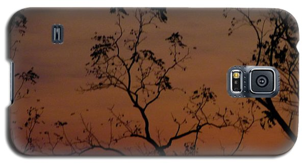 Galaxy S5 Case featuring the photograph Tree Top After Sunset by Donald C Morgan