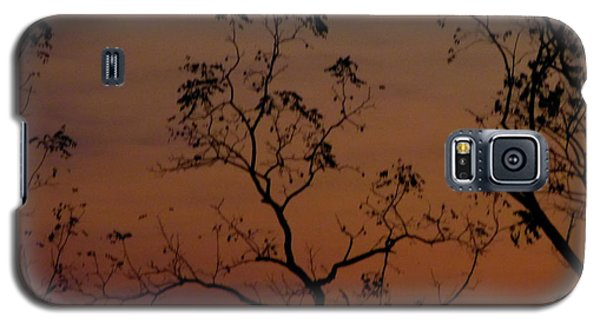 Tree Top After Sunset Galaxy S5 Case by Donald C Morgan