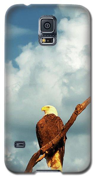 Tree Top Eagle  Galaxy S5 Case