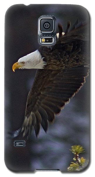 Galaxy S5 Case featuring the photograph Tree Top Flight-signed by J L Woody Wooden