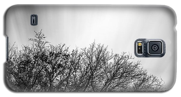 Tree Top With Moving Clouds Galaxy S5 Case