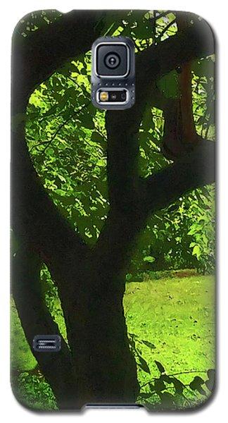 Tree Trunk Green Galaxy S5 Case