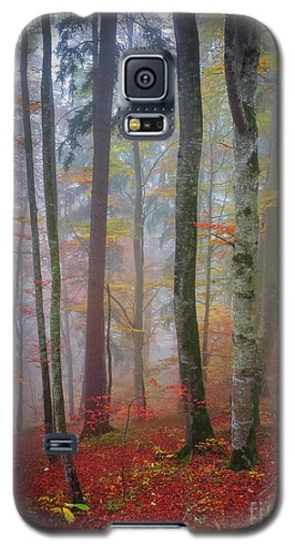 Galaxy S5 Case featuring the photograph Tree Trunks In Fog by Elena Elisseeva
