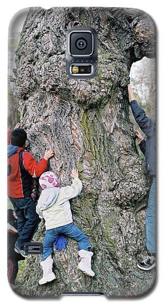 Tree Urchins Galaxy S5 Case