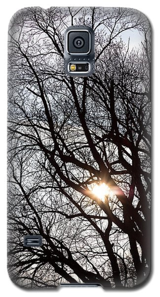Galaxy S5 Case featuring the photograph Tree With A Heart by James BO Insogna
