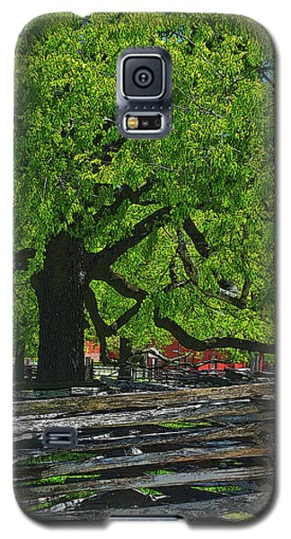 Tree With Colonial Fence Galaxy S5 Case