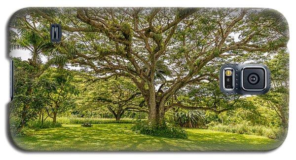 Treebeard Galaxy S5 Case