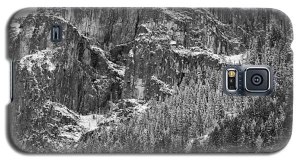Treefall Galaxy S5 Case