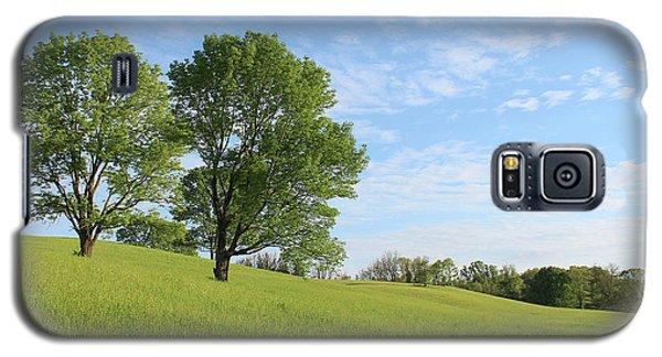 Summer Trees 3 Galaxy S5 Case