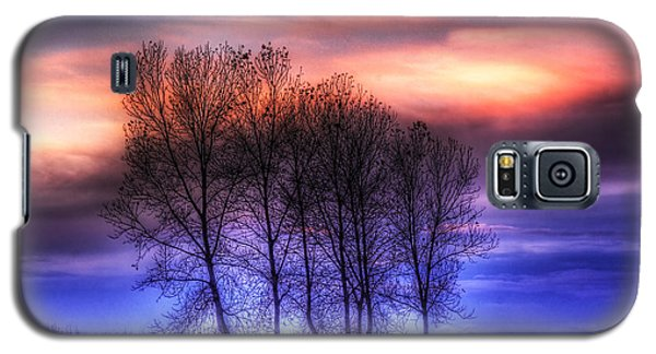 Trees And Twilight Galaxy S5 Case