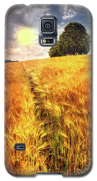 Galaxy S5 Case featuring the photograph Trees At The Top by Debra and Dave Vanderlaan