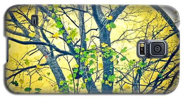 Trees Growing In Silo  - Large Yellow Edition Galaxy S5 Case