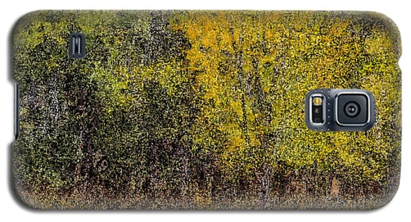 Trees In Fall With Texture Galaxy S5 Case