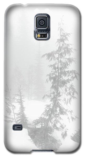 Trees In Fog Monochrome Galaxy S5 Case