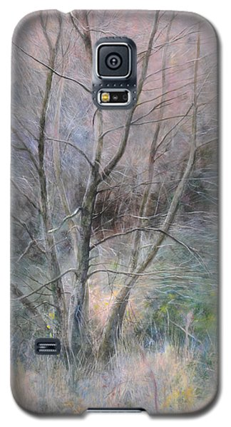 Trees In Light Galaxy S5 Case by Harry Robertson