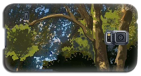 Trees In Park Galaxy S5 Case by Walter Chamberlain