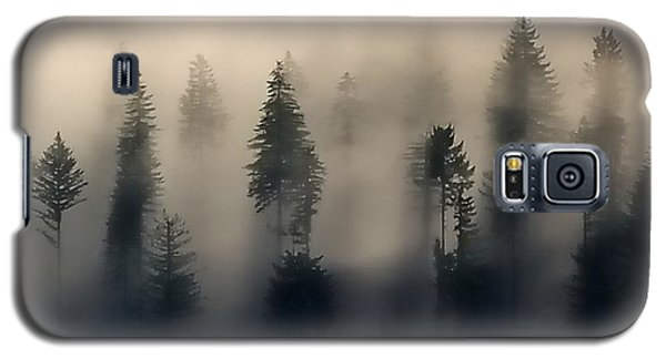 Trees In The Fog Galaxy S5 Case by Jerry Sodorff
