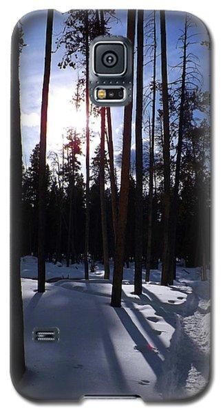 Trees In Winter Galaxy S5 Case