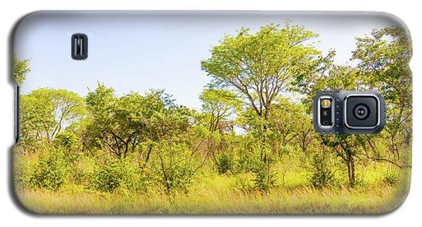 Trees In Zambia Galaxy S5 Case