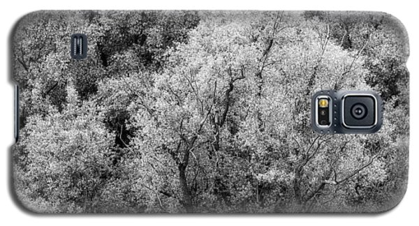 Trees On The River Galaxy S5 Case