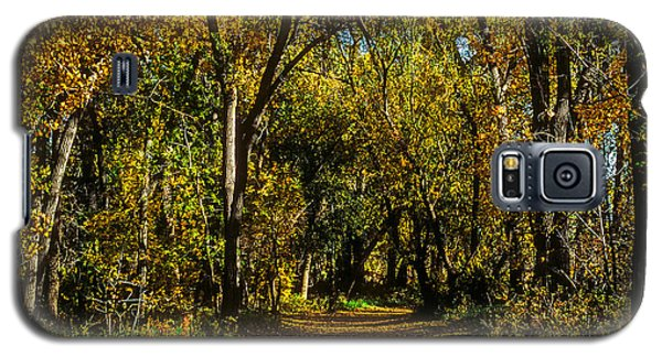 Trees Over A Path Through The Woods In Fall Color Galaxy S5 Case