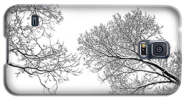 Galaxy S5 Case featuring the photograph Trees Reaching by Marilyn Hunt