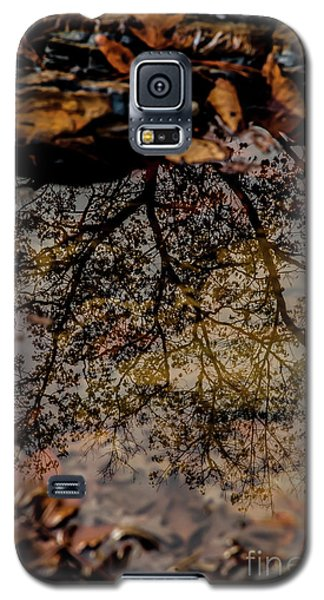 Galaxy S5 Case featuring the photograph Tree's Reflection by Iris Greenwell