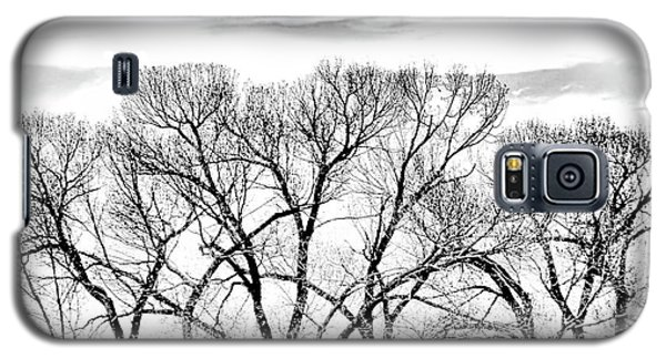 Galaxy S5 Case featuring the photograph Trees Silhouette Black And White by Jennie Marie Schell