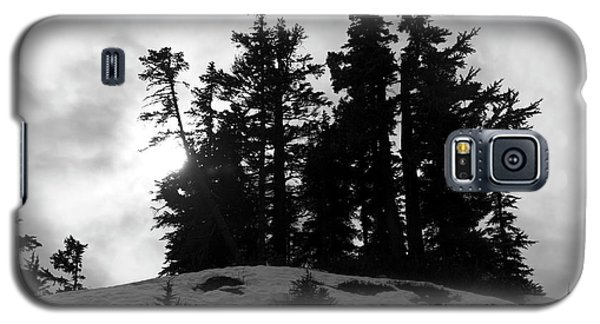 Galaxy S5 Case featuring the photograph Trees Silhouettes by Yulia Kazansky