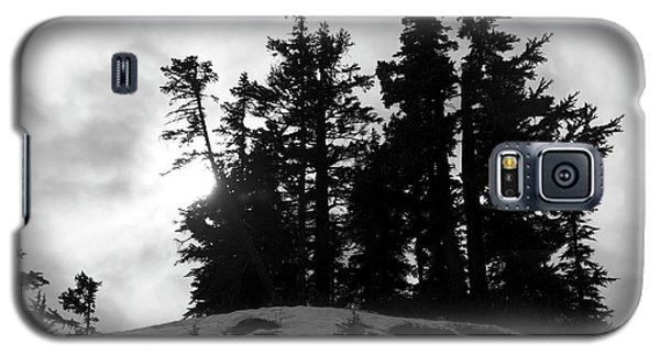 Trees Silhouettes Galaxy S5 Case