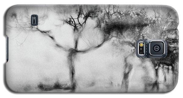Trees Through The Window Galaxy S5 Case